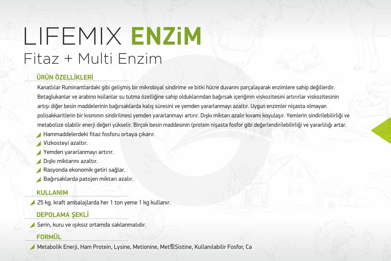 lifemix-enzim