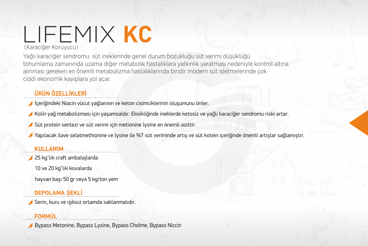 lifemix-kc